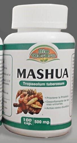 Mashua