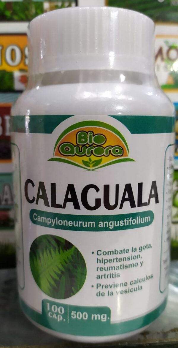 8.-CALAGUALA